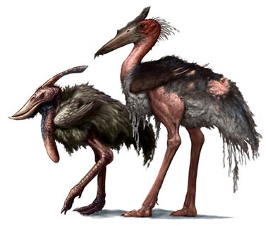 http://surbrook.devermore.net/adaptationscreatures/movies/kong/carrionstork.jpg